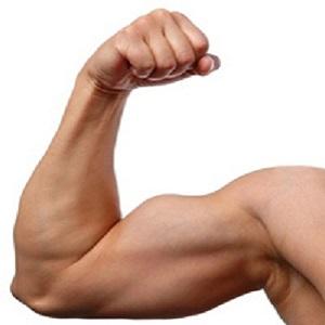 Sviluppare muscoli delle braccia
