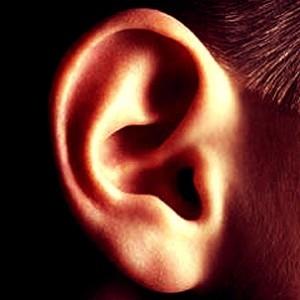orecchie danni rumore