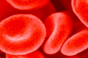 sangue urine