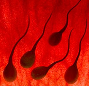 sperma scuro