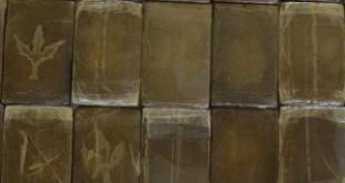 tappo mucoso marrone : Quali sono gli effetti collaterali dellecstasy? - Vivere al Meglio
