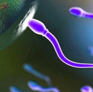 poco sperma