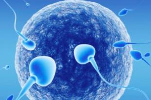 cura infertilità