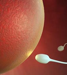 sperma poco