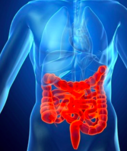 morbo di crohn sintomi