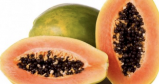 papaya integratore