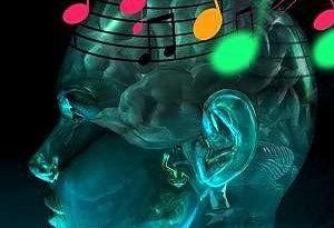 musica funzionalita' cervello