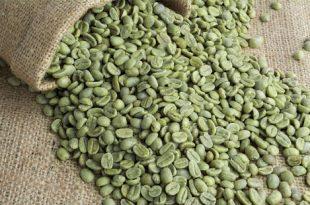 A cosa serve il caffè verde?