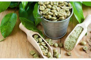 Caffè verde e dimagrimento